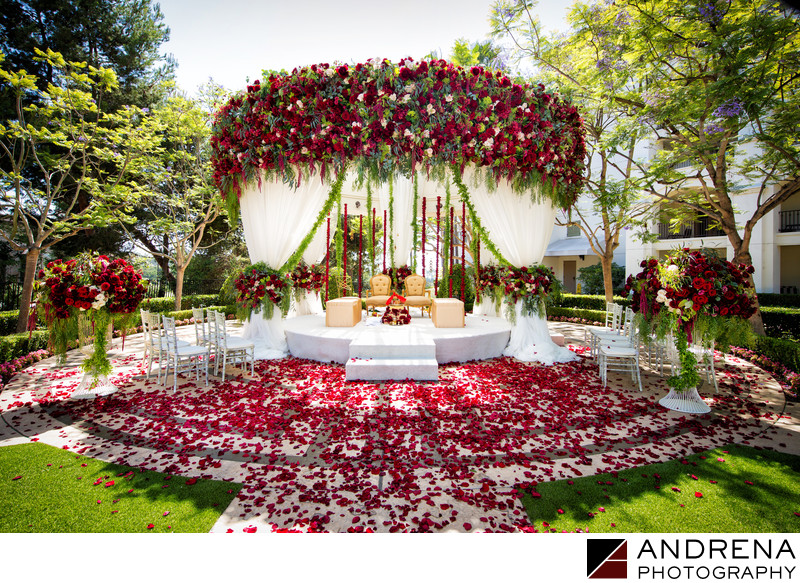 St Regis Monarch Beach Pacific Lawn Wedding Square Root