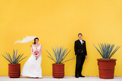 Destination Wedding Photographer Los Cabos Mexico