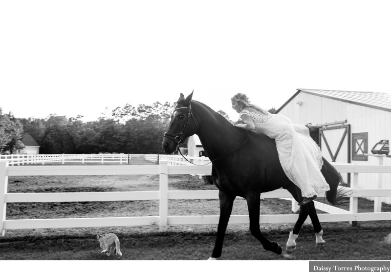 Country Farm Wedding in Virginia Beach ,Virginia