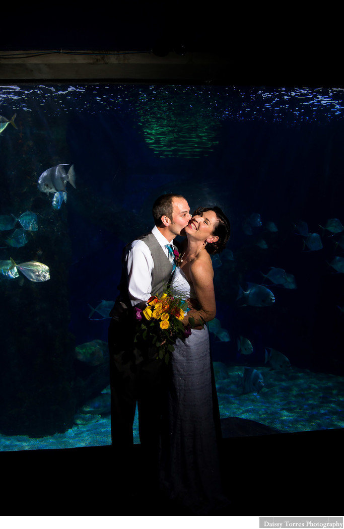 First look at the Virginia Aquarium Wedding