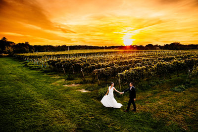 Bedell Cellars Wedding at Cutchogue, NY