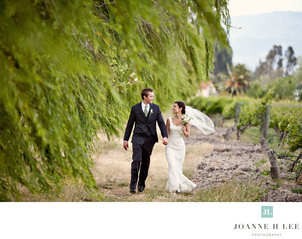 Napa Wine Country based Destination Photographer