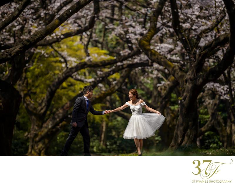 Destination Pre-Wedding Photographers Brisbane - Pre-Weddings - 37 ...
