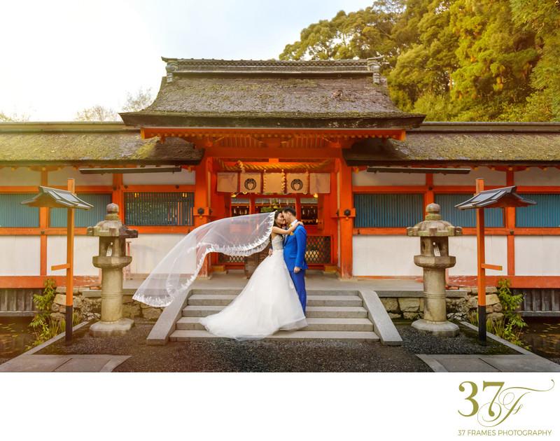 Destination Pre-Wedding Photography Australia - Pre-Weddings - 37 ...