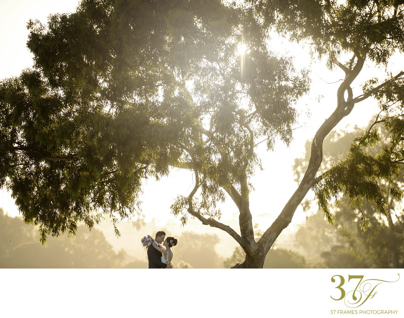 Perth Destination Wedding