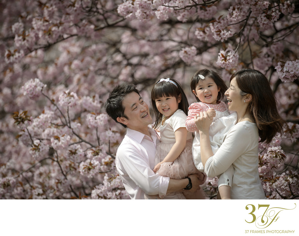 Cherry Blossom Family Portraits in Tokyo