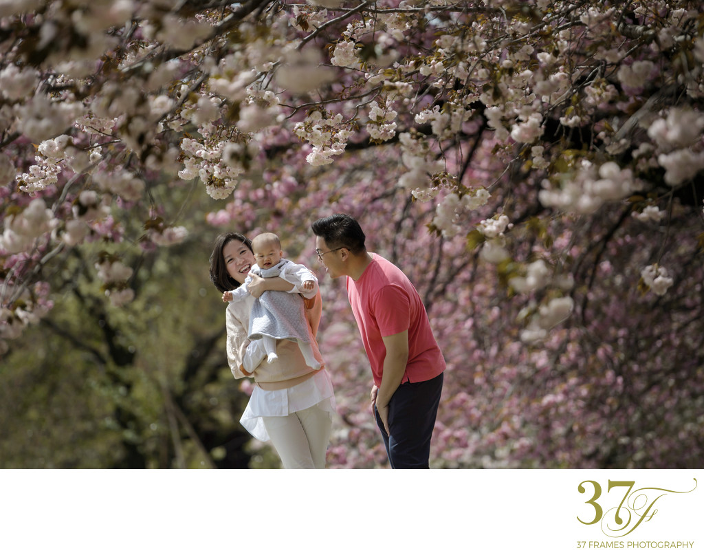 Spring Portraits in Tokyo | Cherry Blossom musings