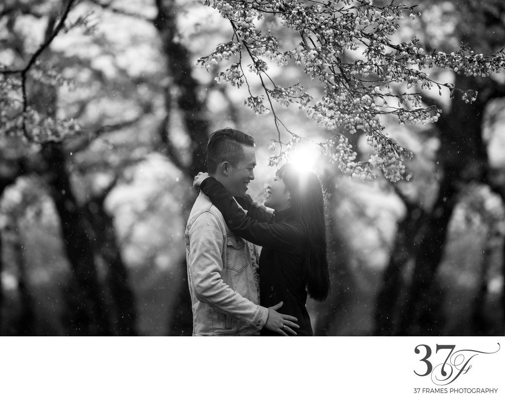Vacation and PreWedding photographers Japan | Hakodate