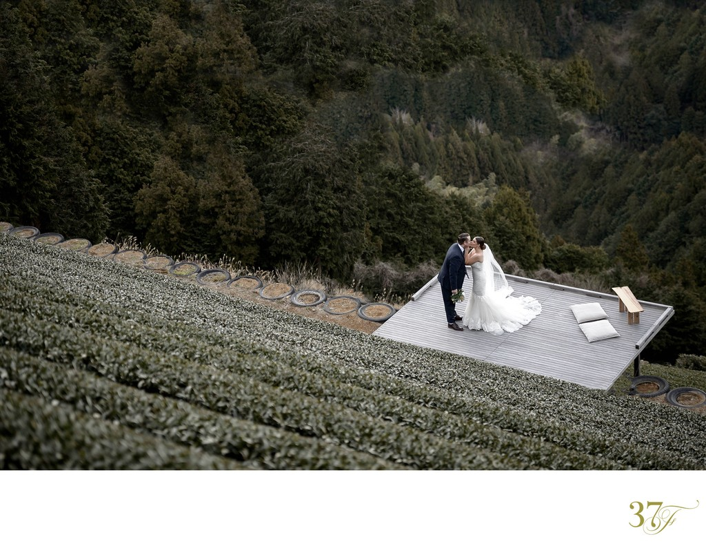 Elopement packages available for Shizuoka