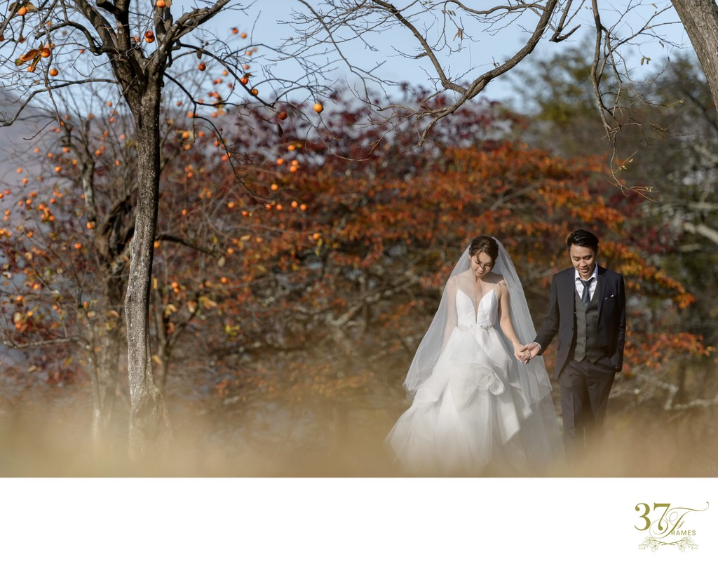 Outdoor Weddings in Japan