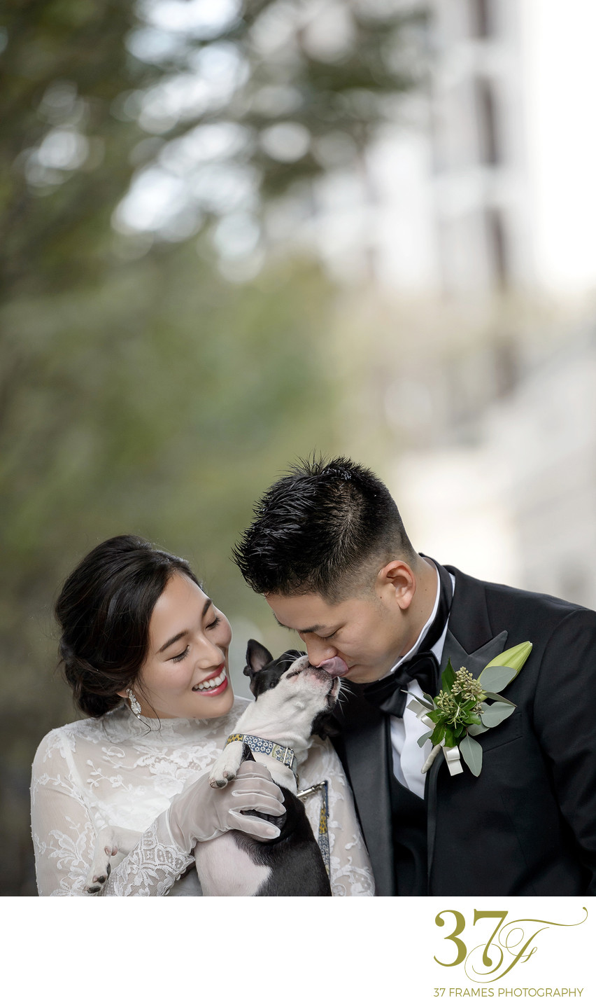 7 Tips for Including Your Dog in Your Wedding