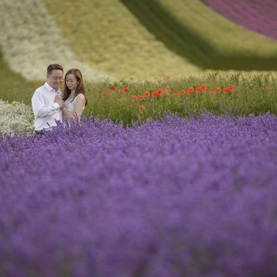Wedding photos in the Lavender of Hokkaido
