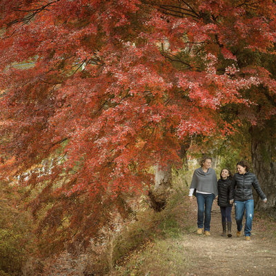 AUTUMN MINI SESSIONS AT KAWAGUCHIKO