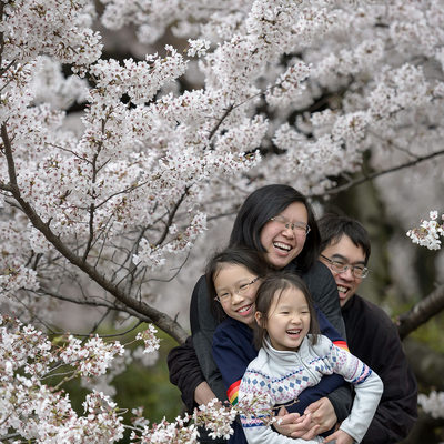 Cherry Blossom Family Photography Packages