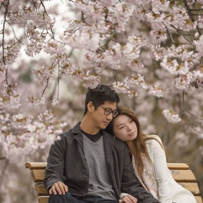 Cherry Blossom Couple Portraits | Tokyo Photographers