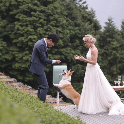 Elopement in Japan including pet Dog