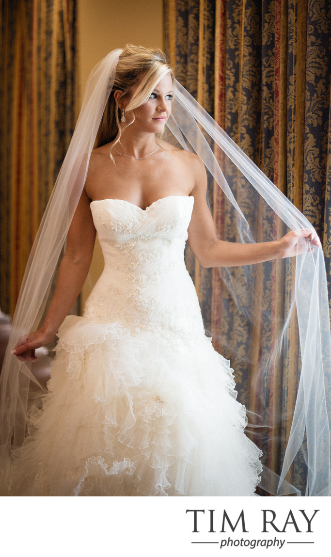 Beautiful bridal portrait at Waterfront Place Hotel in Morgantown, WV