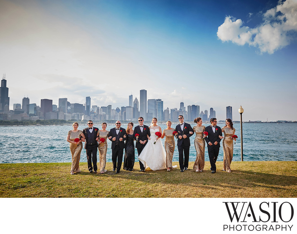Adler Planetarium Wedding party