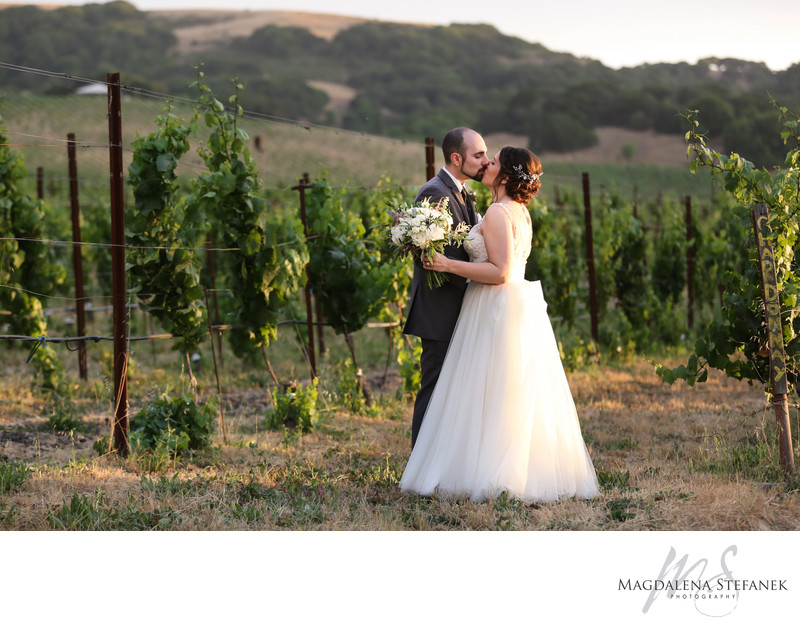 newlyweds among sonoma vineyards