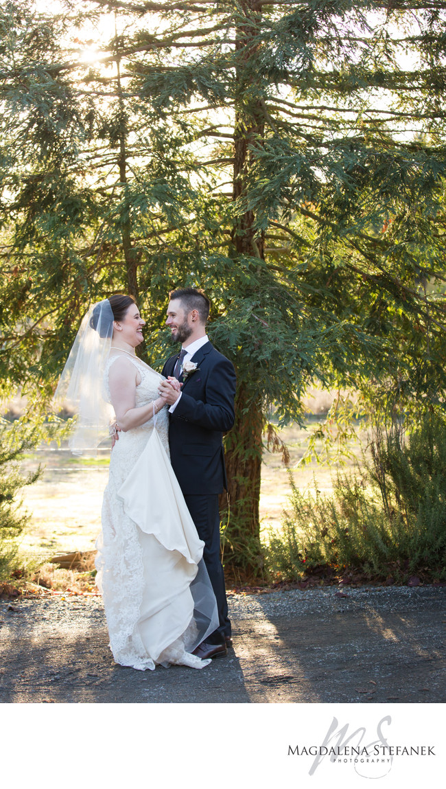 redwoods wedding photos