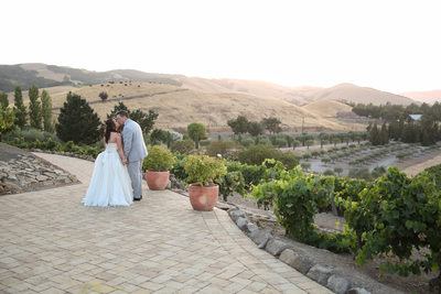 Viansa Sonoma wedding photographer