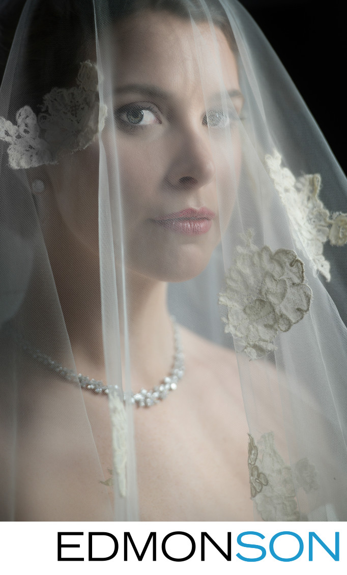 Gorgeous Bridal Portrait With Veil For Classic Beauty