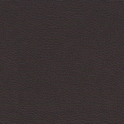 Chocolate Classic Leather Wedding Album Cover Swatch