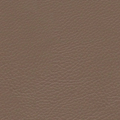 Cappuccino Classic Leather Wedding Album Cover Swatch