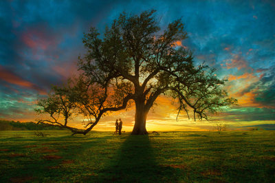 Epic Engagement Photo At Sunset Under Live Oak