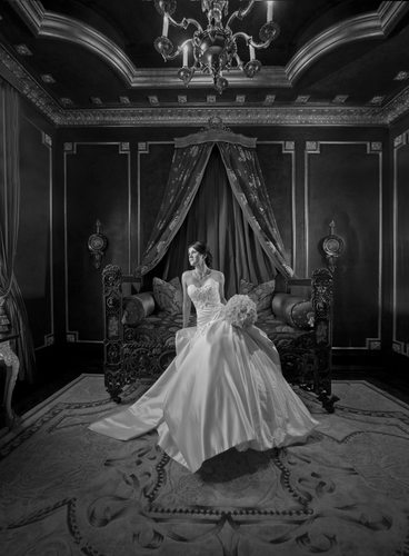 Bridal Portrait In Lavish French Inspired Setting
