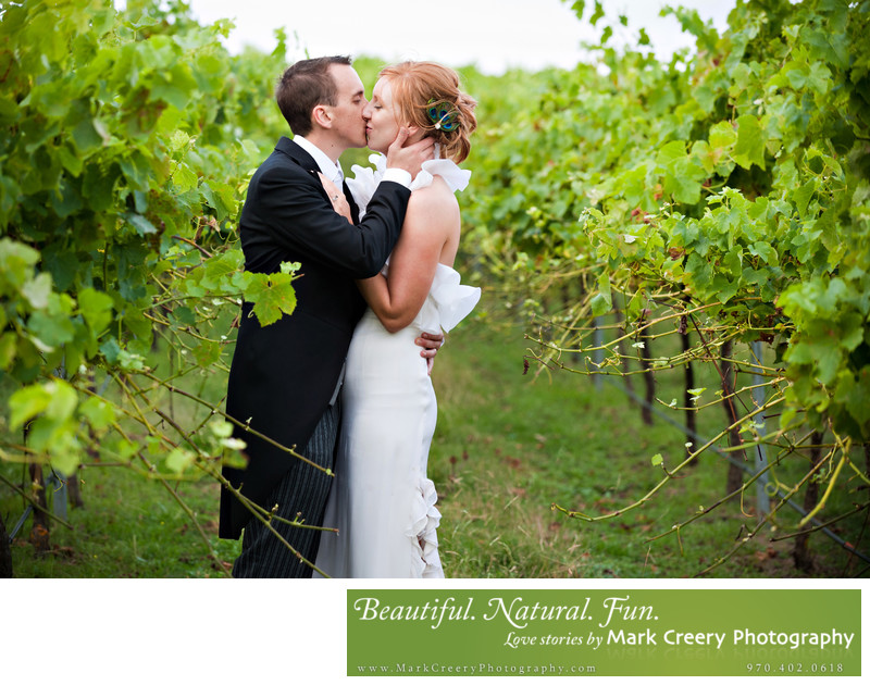 Vineyard wedding photography in Colorado