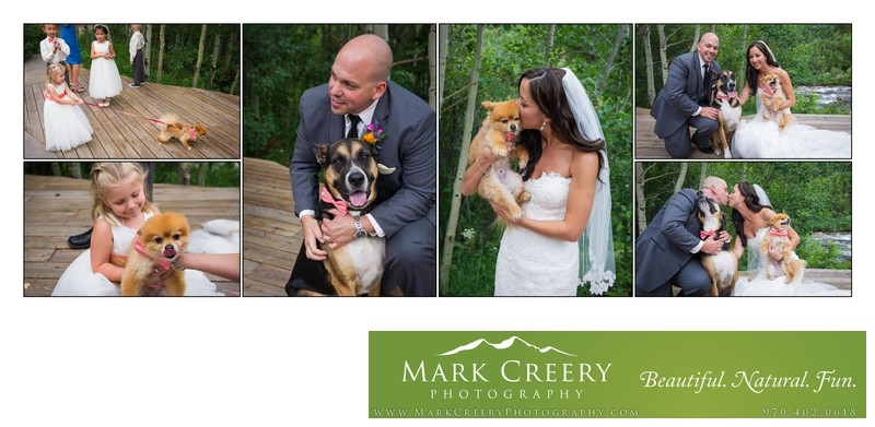 Bride & Groom with their dogs at Wild Basin Lodge