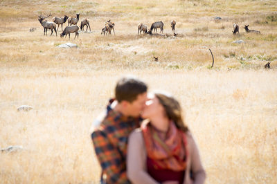 Moraine Park engagement photo with elk