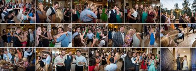 Wild dance party at Della Terra wedding reception