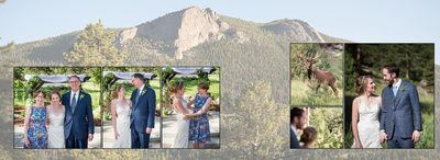 Wedding portraits with elk Della Terra Mountain Chateau