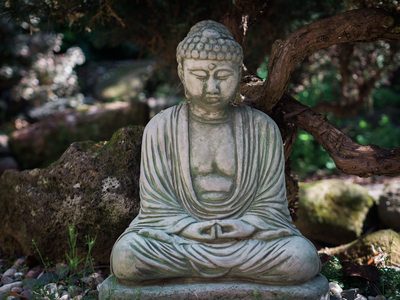 Buddha statue in the tranquil garden of the Zen House