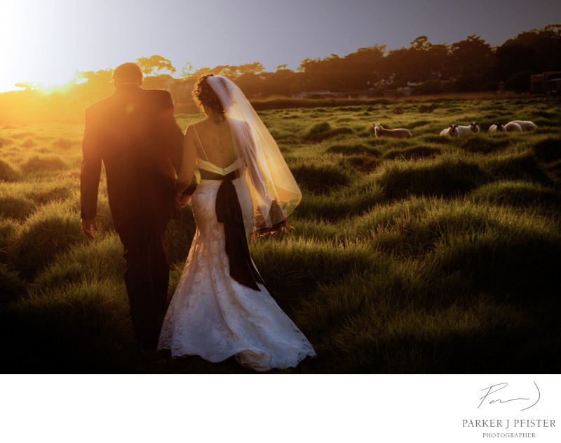 Mission Ranch Wedding Photographer