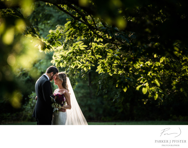 Biltmore Estate Destination Wedding Photographer