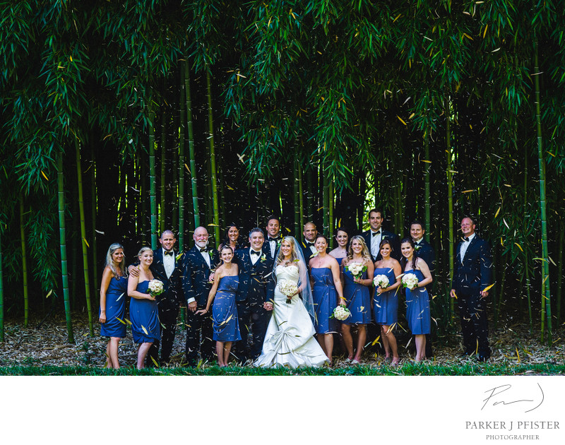 Biltmore Bamboo Forest Wedding Photography