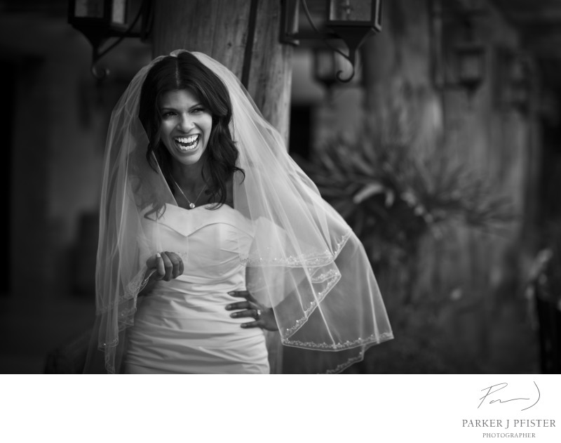 One and Only Palmilla Wedding Photography