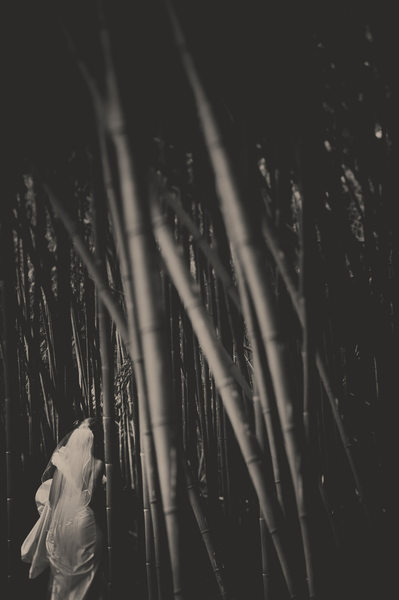 Biltmore Estate Bamboo Forest Wedding Photography