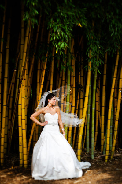Bamboo Forest International Wedding Photography