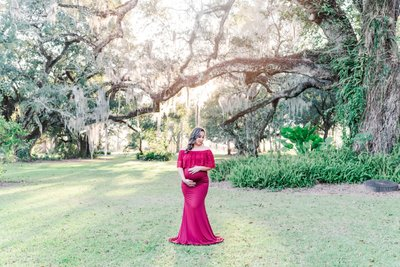 Ardoyne Plantation maternity photos
