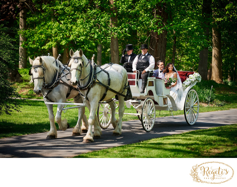 Horse and Carriage at Rosemont Manor, Berryville
