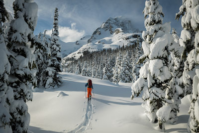 Ski touring home decor photography in British Columbia