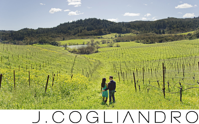 Destination Engagement Photography in Napa, California