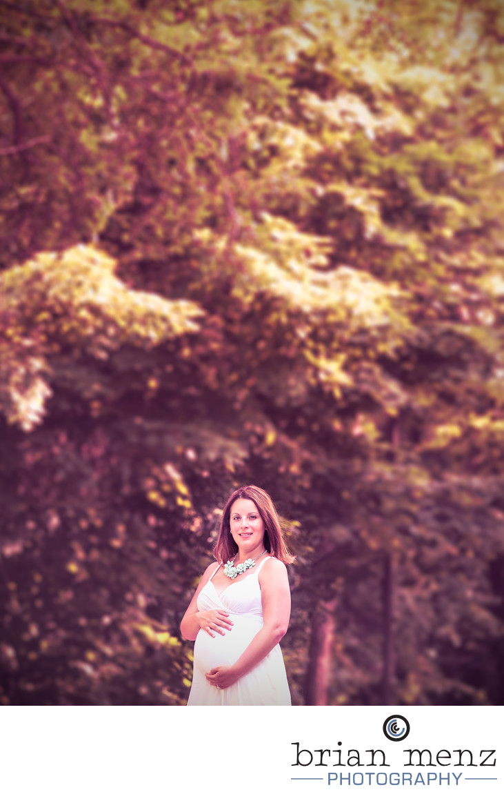 portage michigan maternity photography
