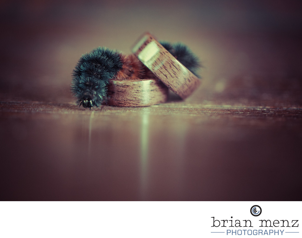wedding rings with a catapilliar kalamazoo wedding photography