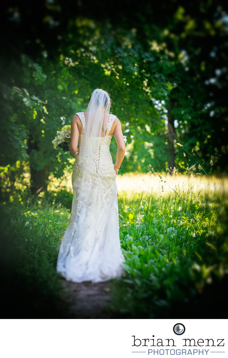 stony creek metro park bridal photo