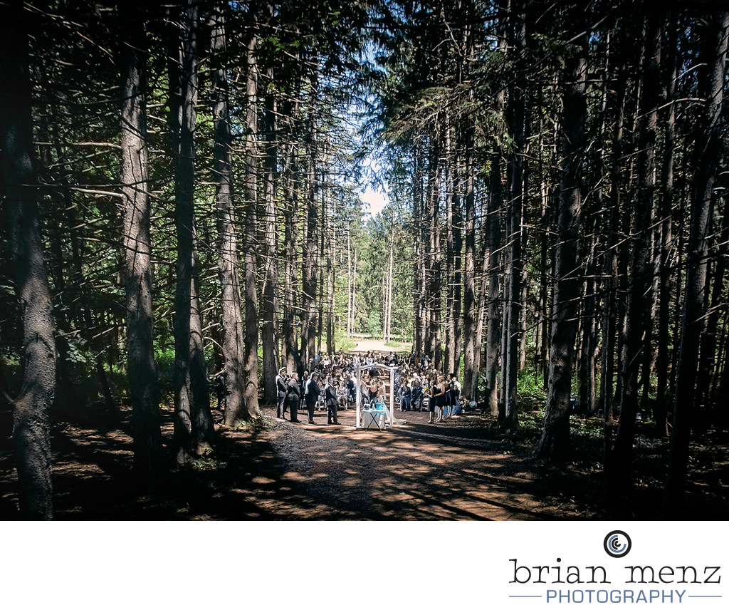 stony creek metro park wedding ceremony photo